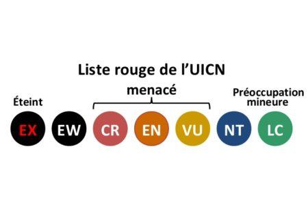 C'est quoi la liste rouge de l'UICN ?