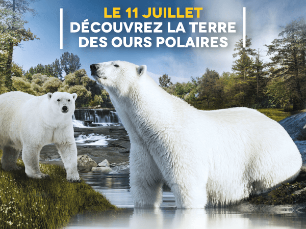 © Zoo de la Flèche